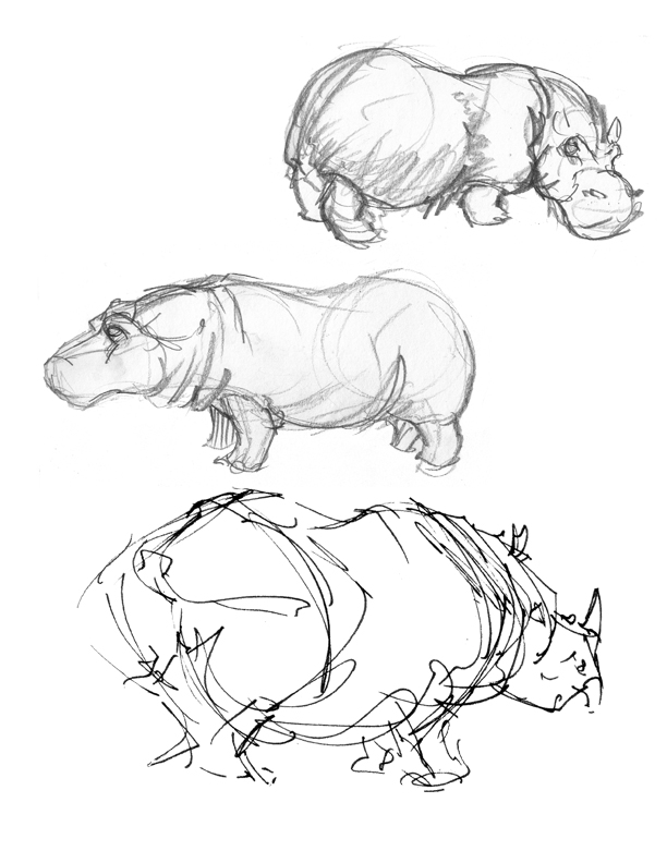 Life Drawings from Zoo